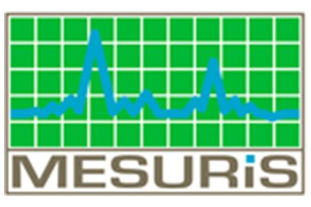 Logo Mesuris