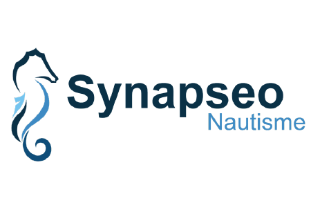 Logo Synapseo
